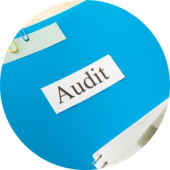 services-auditing